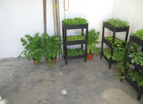 室内植物栽培基质